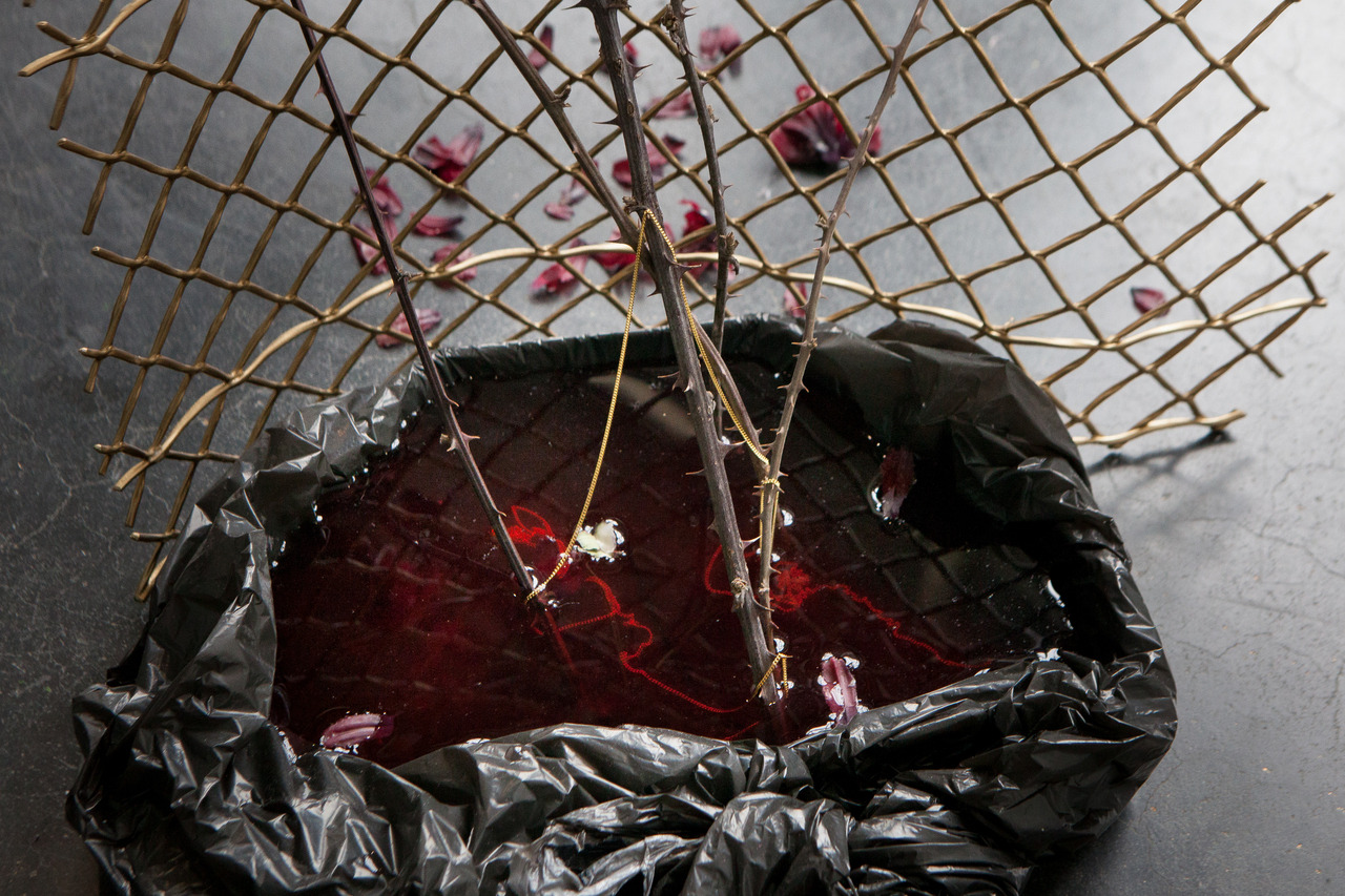fuente estruch marina gonzalez guerreiro